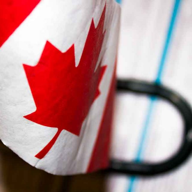 Immigrants & Visitors to Canada Medical Insurance Cost